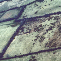 http://www.discoveryprogramme.ie/images/Aerial_Archives_Images/temp3/LS_AS_35CT_00080_14m copy.jpg