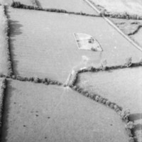 http://www.discoveryprogramme.ie/images/Aerial_Archives_Images/temp/LS_AS_35BWN_00106_29 copy.jpg