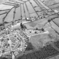 http://www.discoveryprogramme.ie/images/Aerial_Archives_Images/temp/LS_AS_35BWN_00012_38 copy.jpg