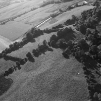 http://www.discoveryprogramme.ie/images/Aerial_Archives_Images/temp/LS_AS_35BWN_00076_04 copy.jpg