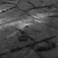 http://www.discoveryprogramme.ie/images/Aerial_Archives_Images/temp/LS_AS_35BWN_00110_13 copy.jpg