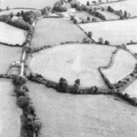 http://www.discoveryprogramme.ie/images/Aerial_Archives_Images/temp/LS_AS_35BWN_00096_61 copy.jpg